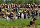 Rohingya repatriation will begin soon with sending the first batch of over 3,000 Rohingyas , said Bangladesh Foreign Minister.