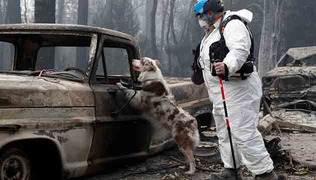 North California fire : Death toll at 71, more than 1,000 missing and  about 12,000 homes and other structures up in smoke.