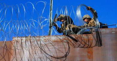 The real mission for thousands of troops Donald Trump rushed to US-Mexico border
