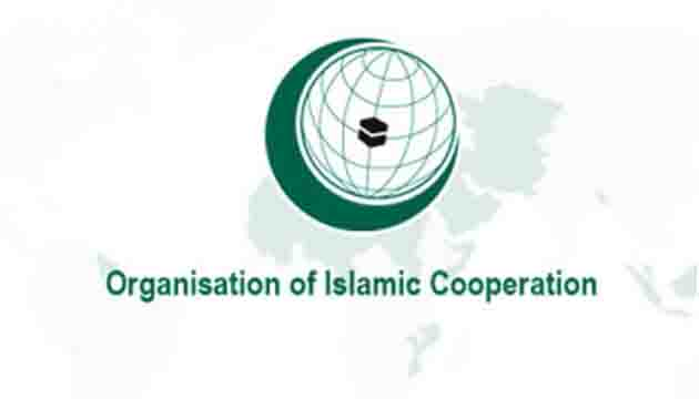 OIC General Secretariat Calls on Member States and Humanitarian Organizations to Commemorate Orphan's Day
