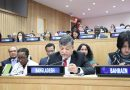 Bangladesh's resolution on natural fibres adopted by consensus at the UN